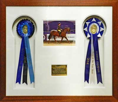 Horse of the year show