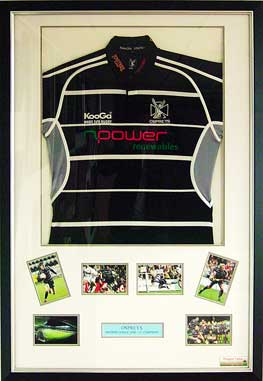 Ospreys shirt